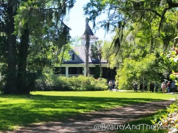 grounds at Magnolia Plantation Beauty and the Beets