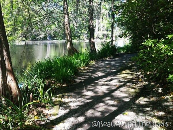path Magnolia Plantation Beauty and the Beets
