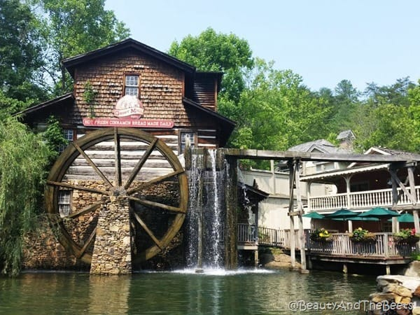Dollywood Theme Park Beauty and the Beets