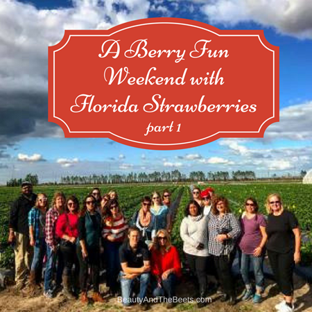 Berry Fun Weekend Florida Strawberries Beauty and the Beets (1)
