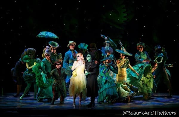 The National Touring Company of Wicked (Photo by Joan Marcus _2015)