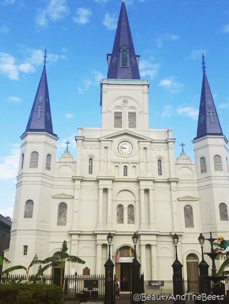 St Louis Cathedral New Orleans Beauty and the Beets