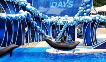 New reasons to visit Sea World Orlando
