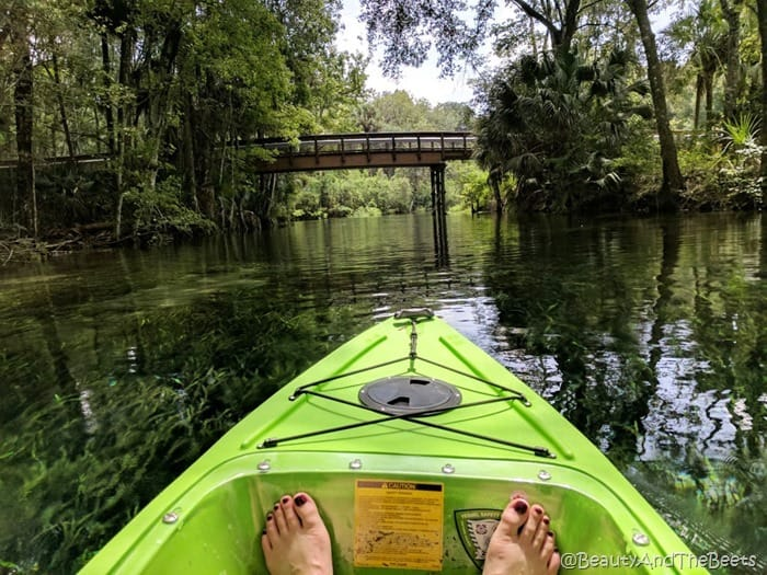 Silver river kayak Silver Springs State Park Beauty and the Beets