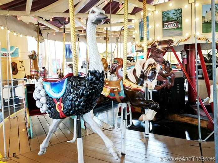 ostrich Merry Go Round Museum Sandusky Beauty and the Beets