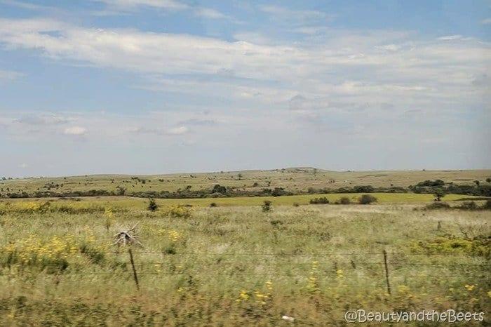 #FarmFoodTour Kansas Beauty and the Beets Flint Hills