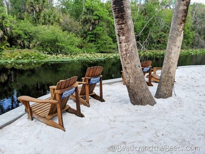 white sand Wekiva Island Beauty and the Beets
