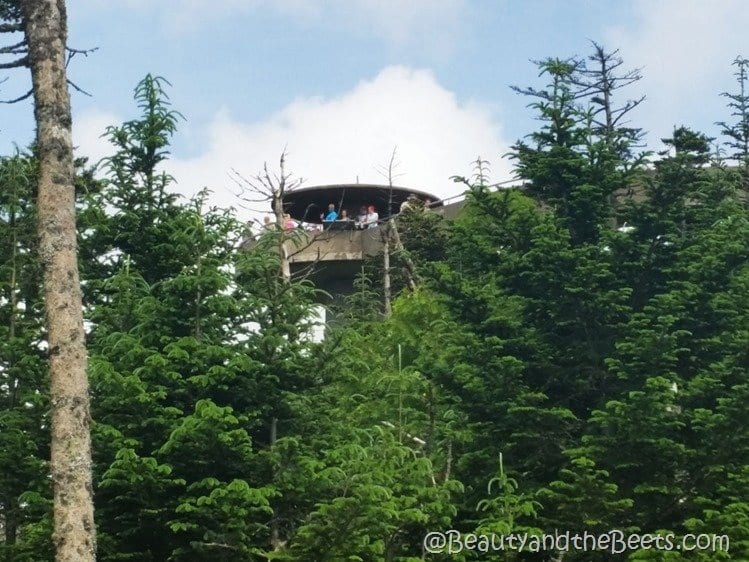Clingmans Dome observatory Beauty and the Beets