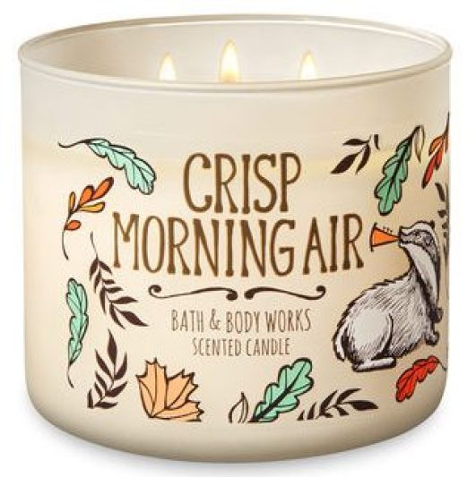 crisp autumn air candle