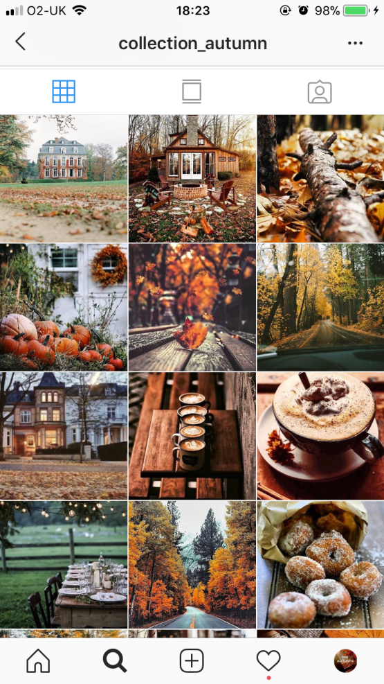 collectionautumn Instagram