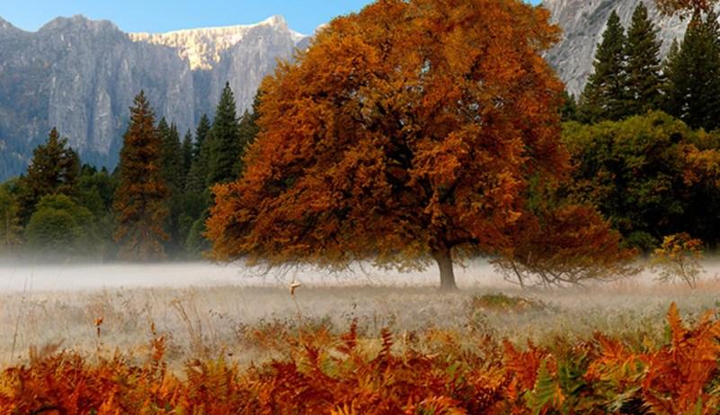 Autumn in Yosemite