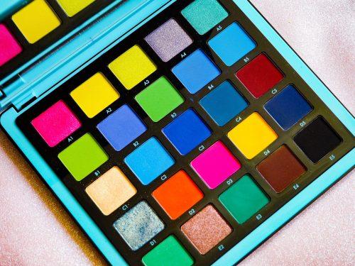 Norvina Pro Pigment Palette Vol. 2 Review