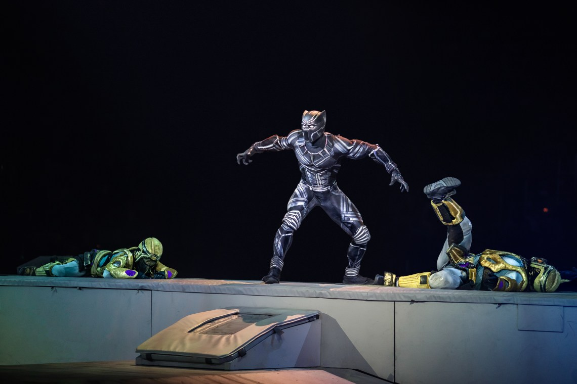Marvel Universe LIVE! Age of Heroes Black Panther