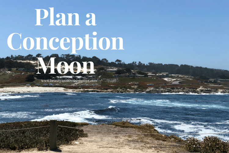 Trying to Conceive? Plan a Conception Moon