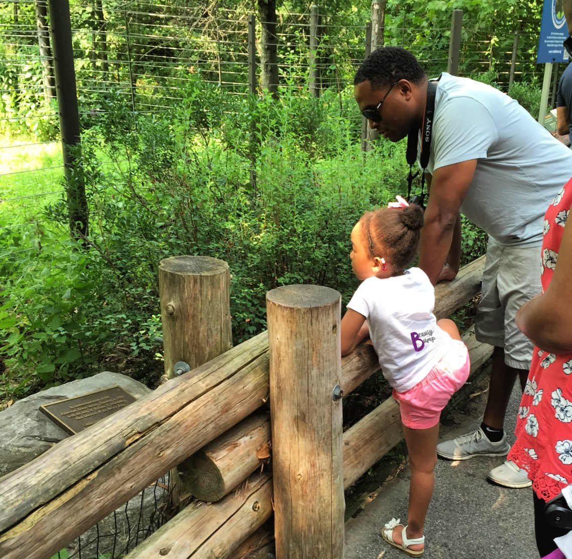 Spring Break 2019: Fun Things to do in NYC with Kids - The Bronx Zoo
