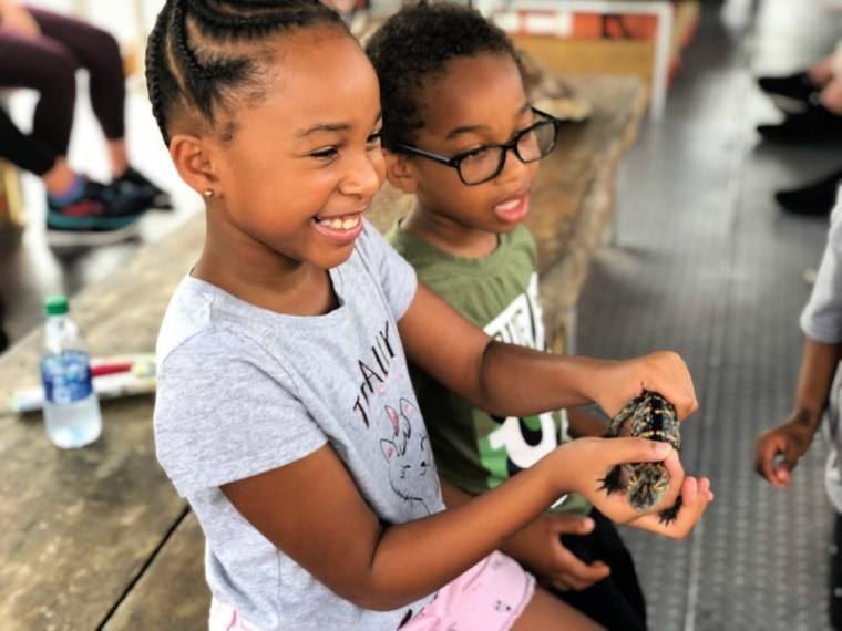 o ensure your kids have fun should your family visit New Orleans here is a list of kid-friendly activities to do in New Orleans like the Jean Lafitte Swamp Tour