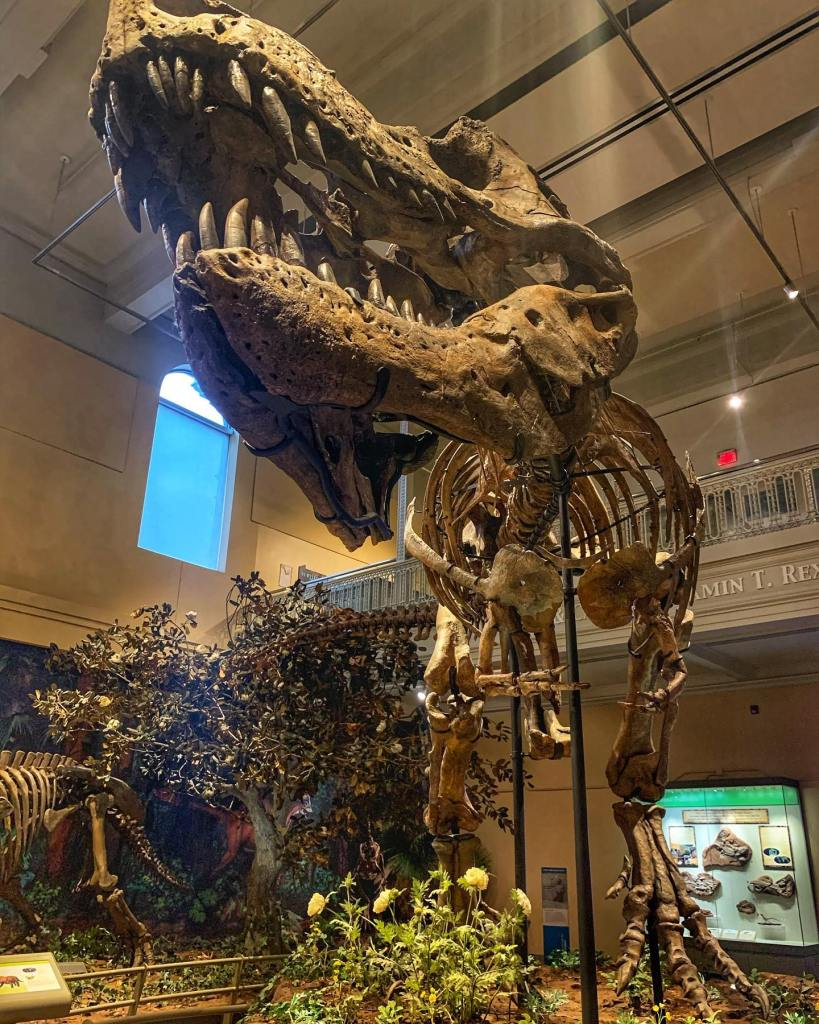 Look no further than Pittsburgh, PA as your next kid-friendly travel destination. Here Are Fun things to do in Pittsburgh with Kids.