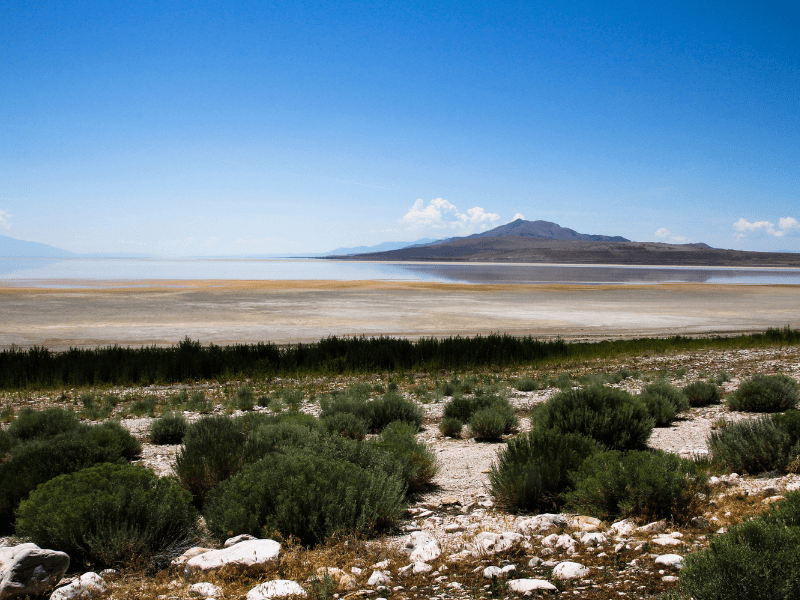 """the Bonneville Salt Flats is also less than two hours away from the Great Salt Lake, which naturalist John Muir called """"one of the great views on the American continent."""""""