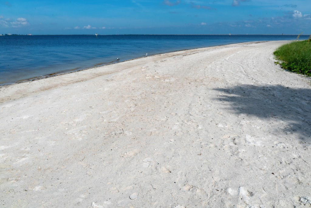 When you're looking for the perfect family-friendly beach that will allow you to bring your four-legged friend, it's thePicnic Island Beach Dog Park. It's a beautiful, spacious park available to guests and their pets.