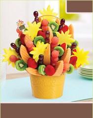 t_watermelon_kiwi_base_e121_w
