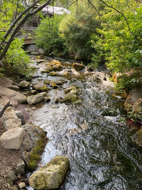 Utah's mountain way of life has a lot to offer. Turns out, when you unplug from technology, there's so much life out there to enjoy! #summer #life #recovery #jesus #god #catholic #christianity #travel #utah #technology