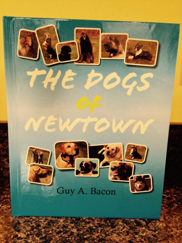 The Dogs Of Newtown, A Boy's Perspective