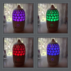 GuruNanda Aromatherapy System Essential Oils and Diffuser