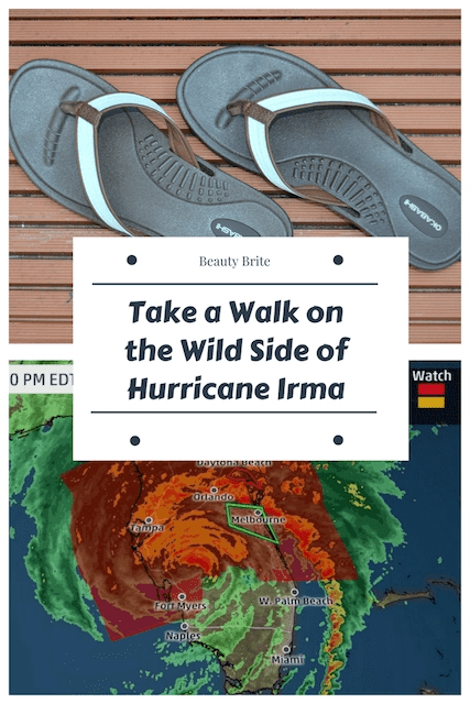 Take a Walk on the Wild Side of Hurricane Irma