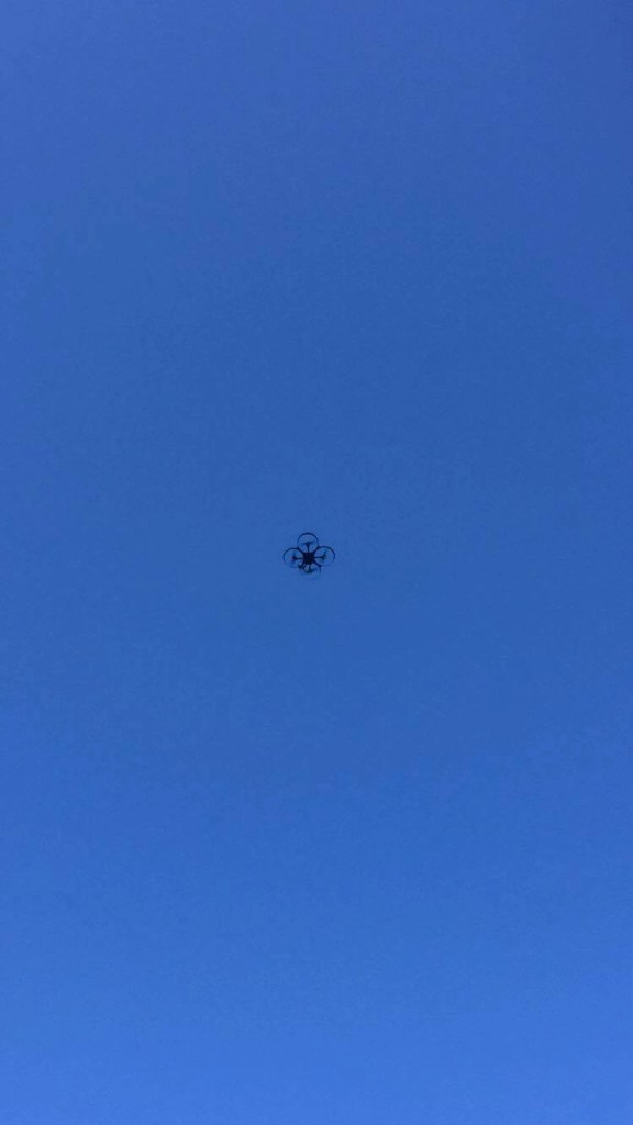 Blue Heron Drone in the sky
