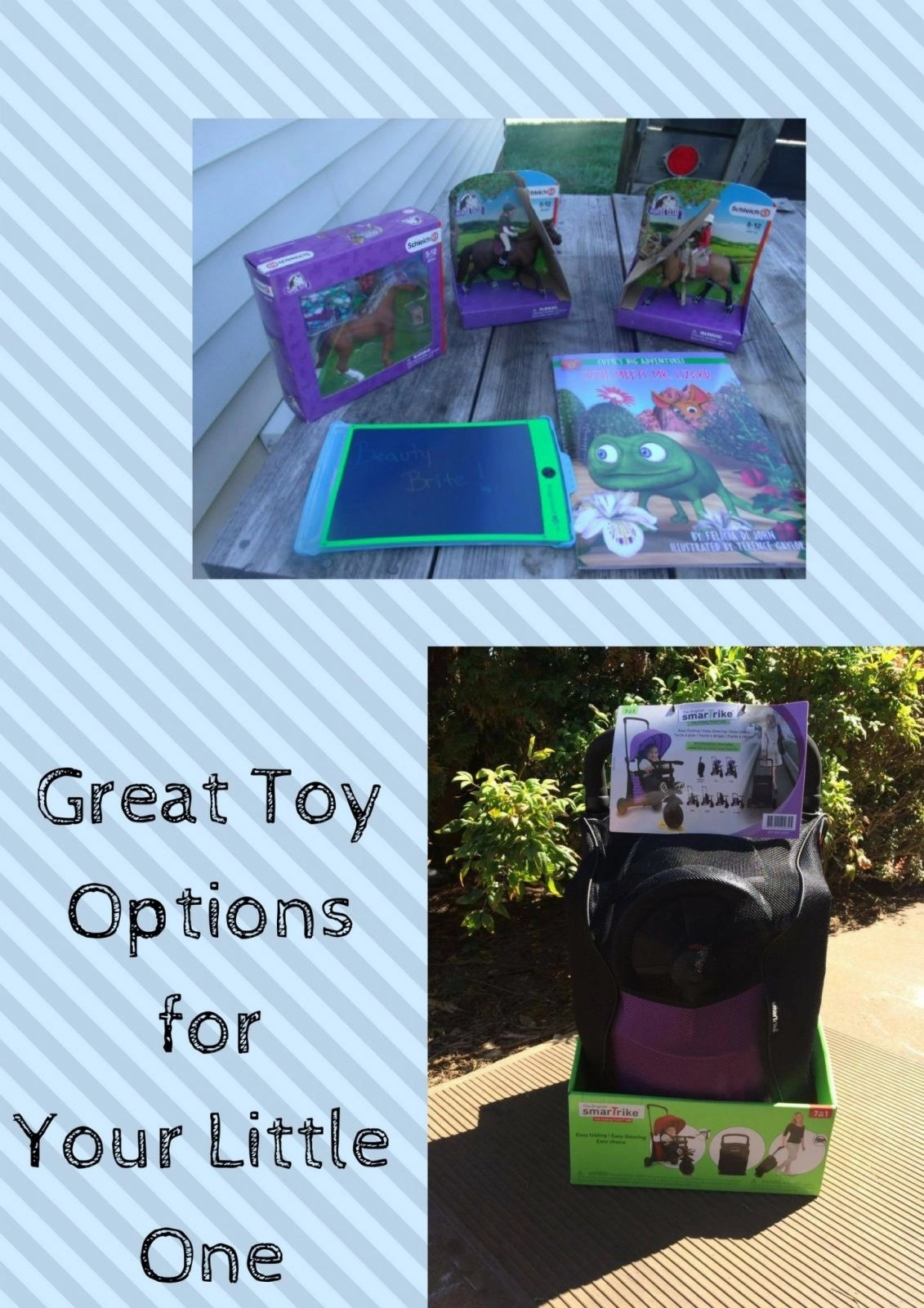 Great Toy Options for Your Little One