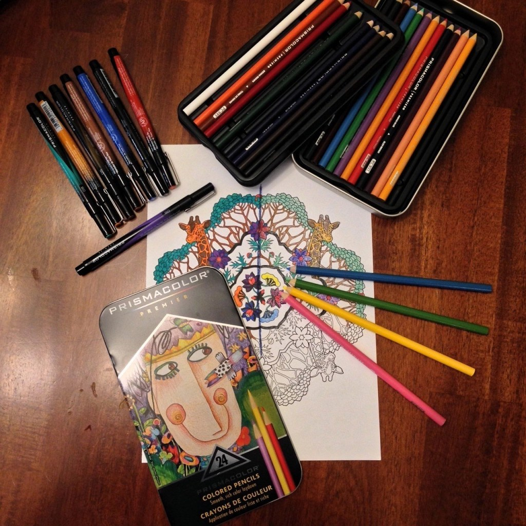 Prismacolor Soft Core Colored Pencils and Prismacolor Fine Tip Illustration Markers
