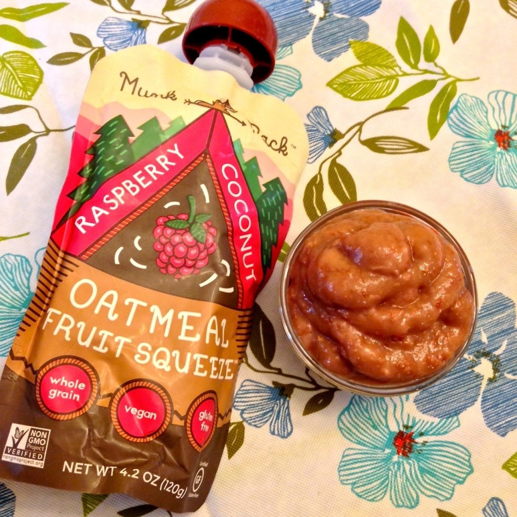 Munk Pack Raspberry Coconut Oatmeal Fruit Squeeze