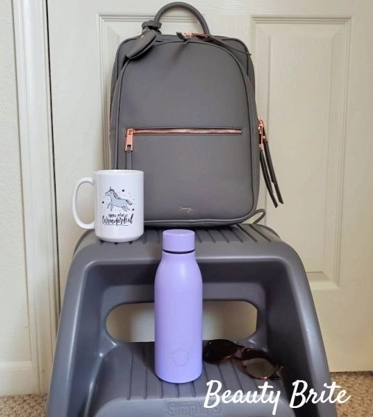Paris Travel Backpack in Gray