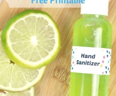 DIY Moisturizing Hand Sanitizer Gel + Free Printable