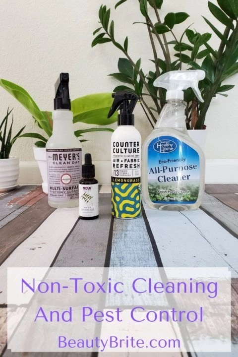 Non-Toxic Cleaning And Pest Control