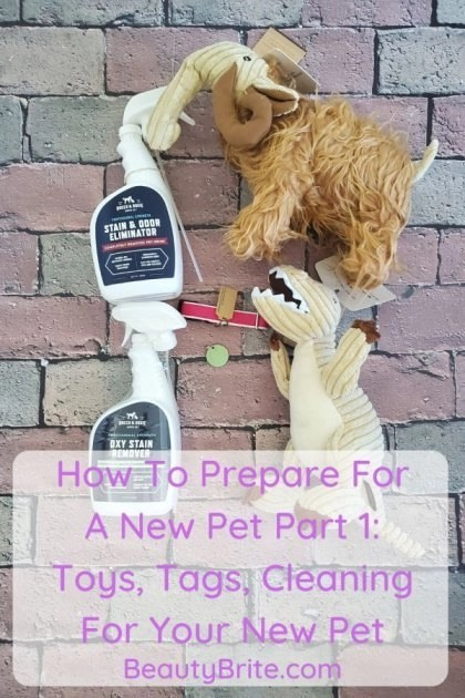 How To Prepare For A New Pet Part 1: Toys, Tags, Cleaning For Your New Pet