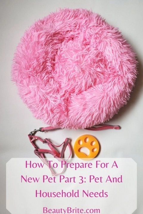 How To Prepare For A New Pet Part 3: Pet And Household Needs