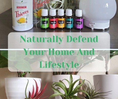 Naturally Defend Your Home And Lifestyle