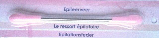 epileerveer