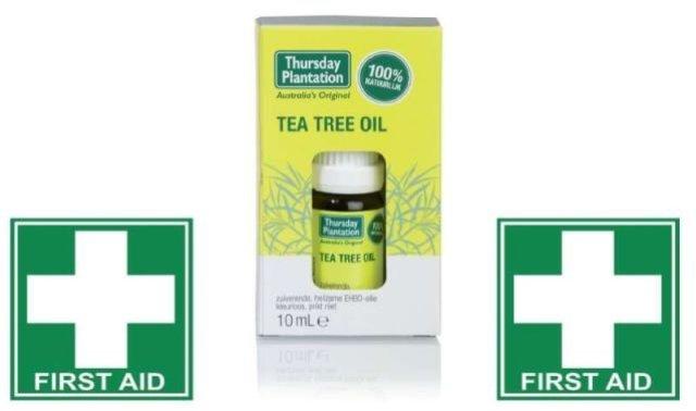 hursday-plantation-tea-trea-2
