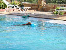 chios zwembad