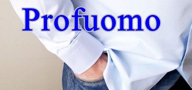 Profuomo overhemd 10