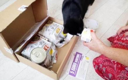 ECOstyle Kittenpakket (6)