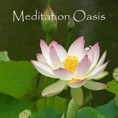 Favorite Meditation Podcasts for Busy People - Meditation Oasis
