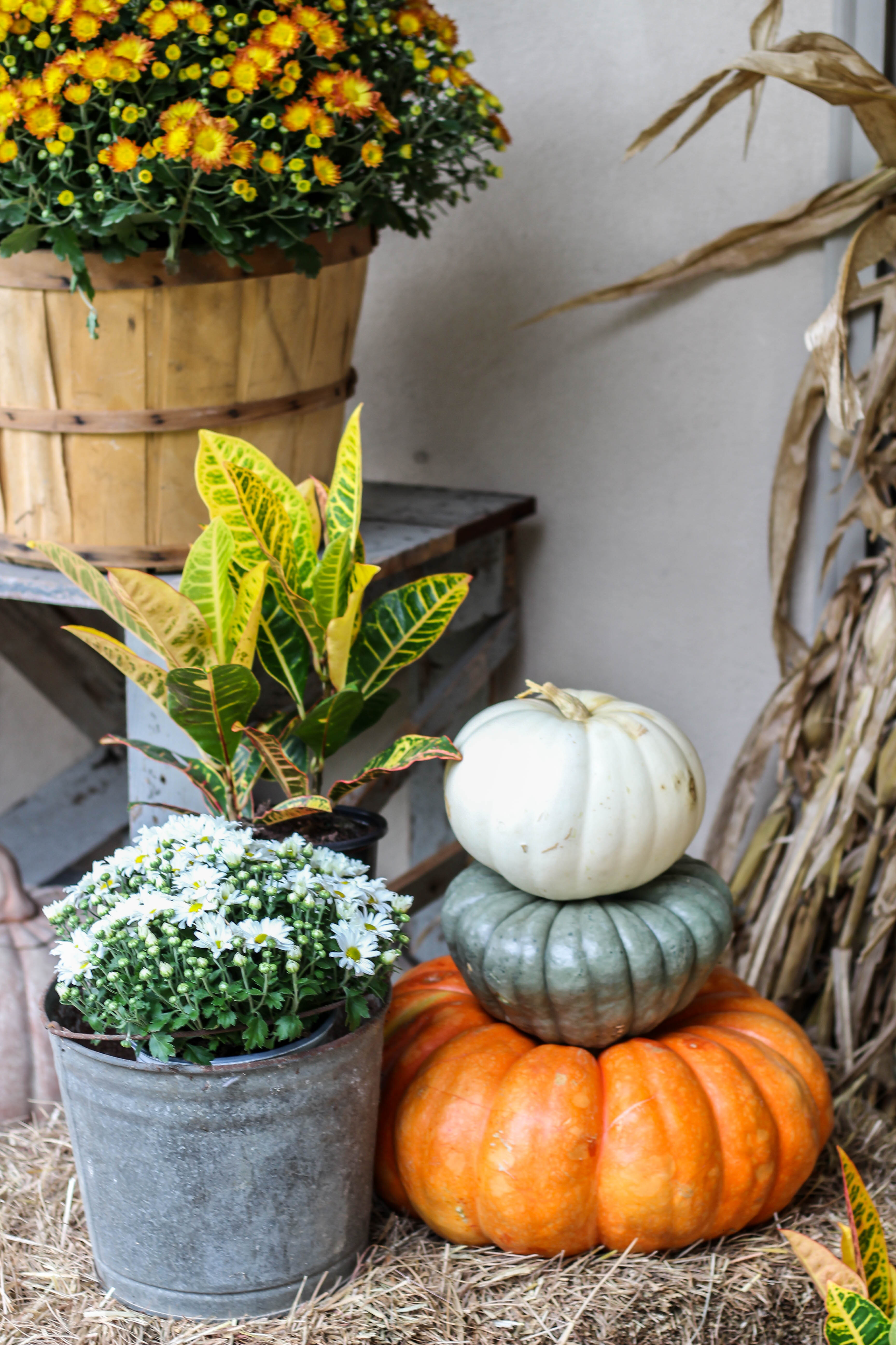 I'm sharing four things you need to create a beautiful fall porch. These are all easy to incorporate and easy on the budget.