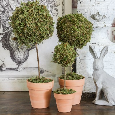 Mini Moss Ball Topiary DIY