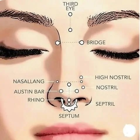 types of nose piercing