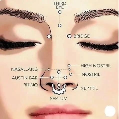 types of nose piercing