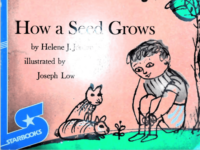 How a Seed Grows Review
