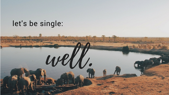 embracing the seasons of life: singleness and its deep wells